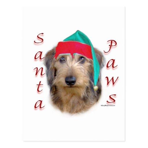 Dachshund Santa Paws Post Card