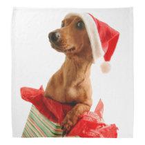Dachshund santa - santa dog - dog gifts bandana