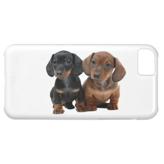 Dachshund Siblings iPhone 5C Cover