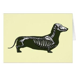 S A Organ Dachshund Dog Anatomy Gifts on Z...