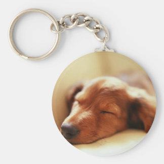Dachshund sleeping key chains