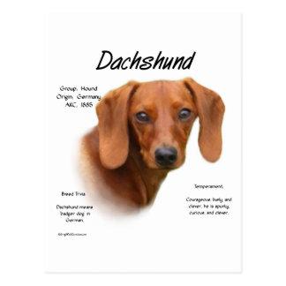 Dachshund (smooth) History Design Post Card