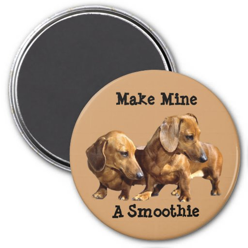 Dachshund Smoothies Magnet