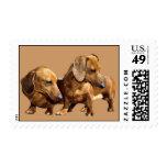 Dachshund Smoothies Postage Stamp