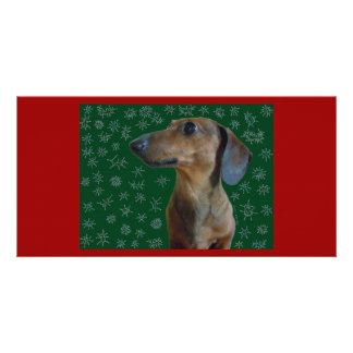 Dachshund Snow Card