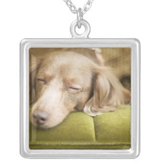 Dachshund Square Pendant Necklace