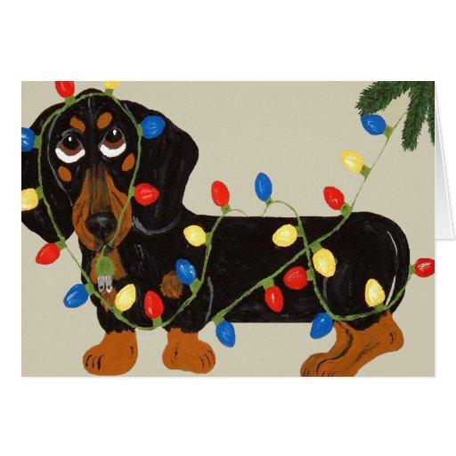 dachshund tangled in christmas lights