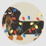 Dachshund Tangled In Christmas Lights Blk/Tan Classic Round Sticker