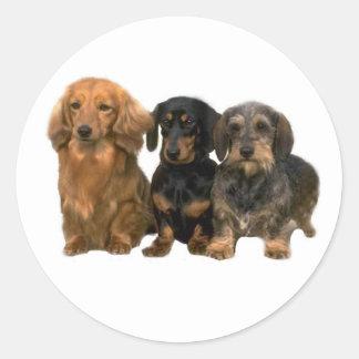 Dachshund Trio Sticker