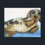 """Dachshund Tummy Canvas Print<br><div class=""""desc"""">A cute dachshund wants his belly rubbed.</div>"""