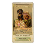 Dachshund  - Vintage Book Plate ID Labels