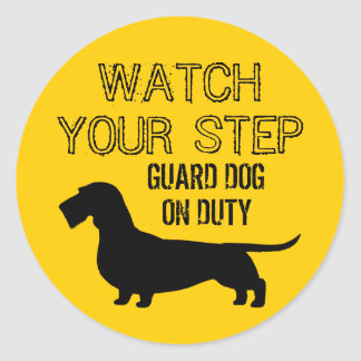 Dachshund Watch Your Step (Wire Haired Doxie) Classic Round Sticker