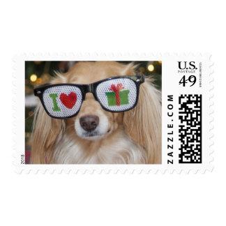 Dachshund wearing 'I love presents' Stamp
