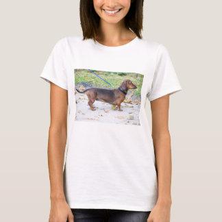 dachshund-wild boar full T-Shirt
