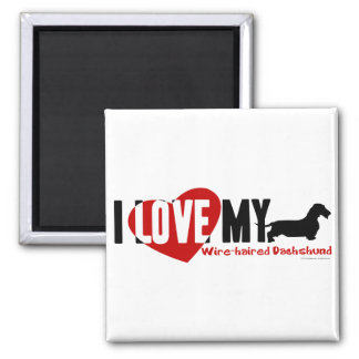 Dachshund [Wire-haired] 2 Inch Square Magnet