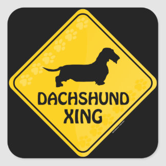Dachshund [wire-haired] Xing Square Sticker