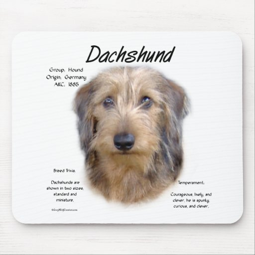 Dachshund (wirehair) History Design Mouse Pad