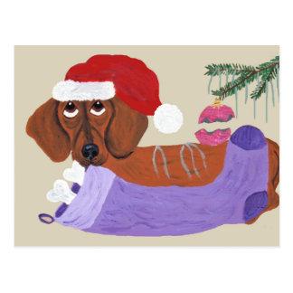 Dachshund With Christmas Stocking Postcard