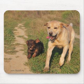 Dachshund y Labrador felices corrientes Alfombrillas De Ratón