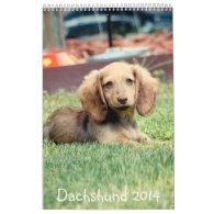 Dachshunds 2014 wall calendar