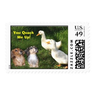 Dachshunds and Ducks Postage