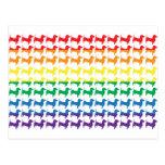 Dachshunds del arco iris del orgullo gay postal