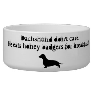 Dachshunds eat honey badgers bowl