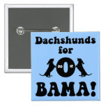dachshunds for Obama 2 Inch Square Button
