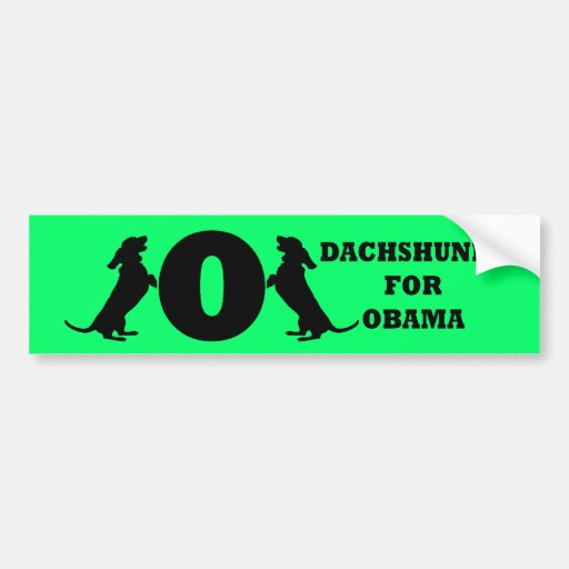 dachshunds for Obama Bumper Sticker