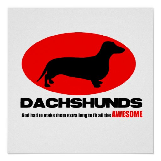 Dachshunds -God made them extra long Poster