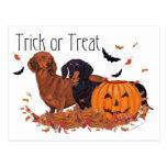 Dachshunds Halloween Postcard