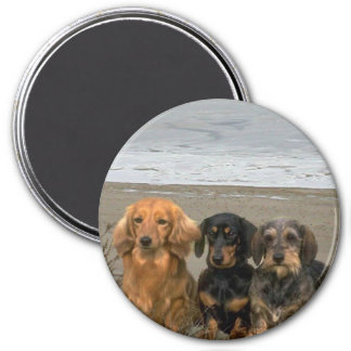 Dachshunds On The Beach Magnet
