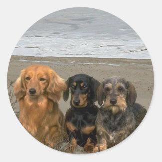 Dachshunds On The Beach Sticker