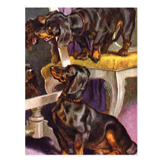 Dachshunds que miran en regalos del arte del vinta tarjeta postal