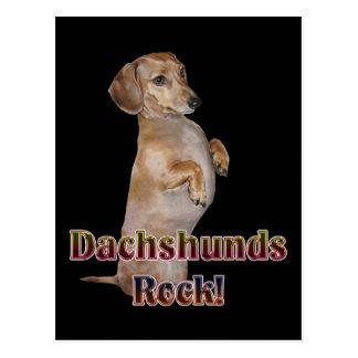 Dachshunds Rock Lilly Postcard
