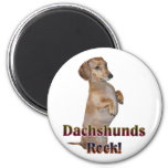 Dachshunds Rock Lilly Refrigerator Magnets