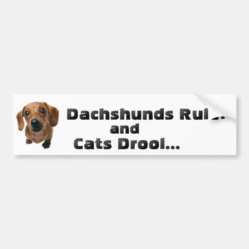 Dachshunds Rule! and Cats Drool... Bumper Stickers