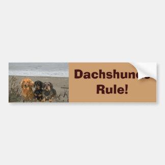 Dachshunds Rule Bumper Sticker On Beach Car Bumper Sticker