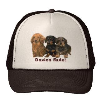 Dachshunds Rule Hat
