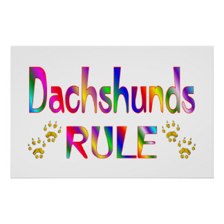 Dachshunds Rule Poster