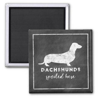 Dachshunds Spoiled Here Vintage Chalkboard Magnet