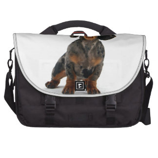 Dachsund Puppy Bags For Laptop