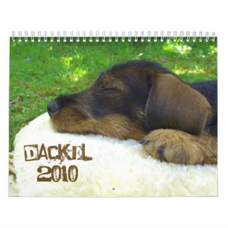 Dackelkalender 2010 - Suesse Rauhaardackelfotos Calendarios De Pared