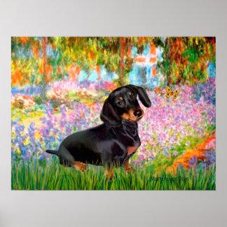 Dacshund (negro y moreno 16) - jardín poster