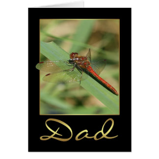 Dad Birthday Card With Red Dragonfly