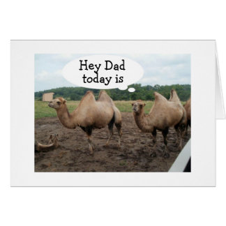 **DAD** CAMELS SAY NO HUMP DAY-IT'S YOUR BIRTHDAY CARD