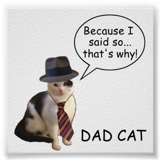 Dad Cat Said So Poster