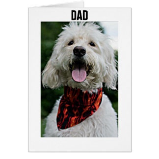 DAD-FOR YOUR BIRTHDAY I GET DRESSED JUST FOR YOU CARD