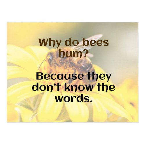 DAD JOKE  Bee Humor Postcard