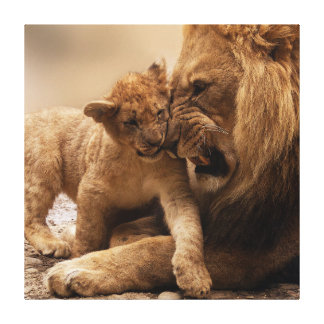 Daddy and Cub Stretched Canvas Print